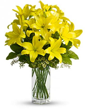 Falls Church Florist Falls Church Va Flower Shop Geno