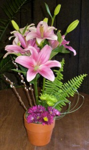 Lily Topiary in a Classic Clay Pot