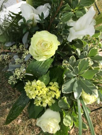 Lime Splendor Sympathy flowers