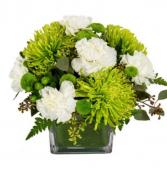 Limes & Whites  Vase