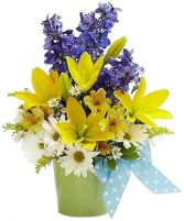 LITTLE BOY BLUE FLOWER ARRANGEMENT