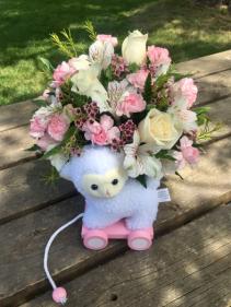 Little Lamb New baby girl