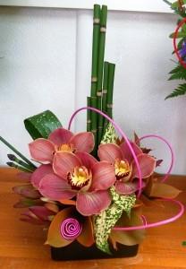 Little Orchid Dish Arrangement