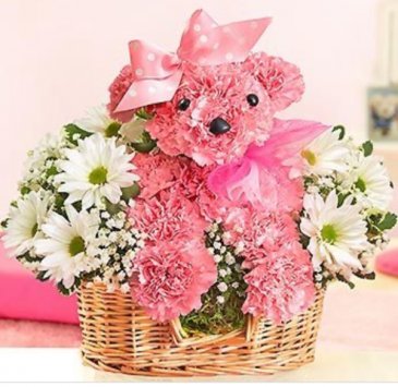 Little pink princess puppy basket