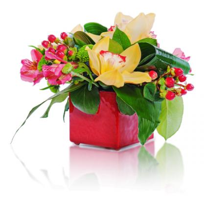 Little Present Floral Arrangement
