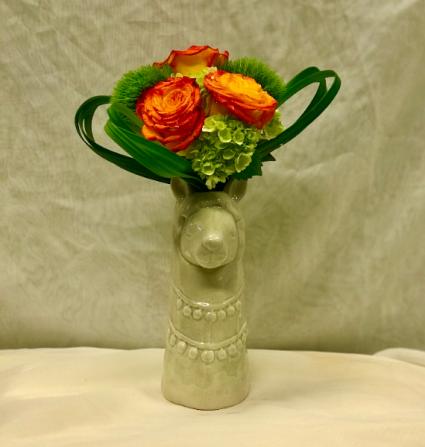 Llama Miranda Fresh Floral Design