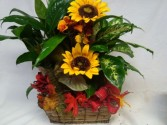 """Fall Majesty Planter"" Fall planter with SILK sunflowers and fall leaves with bow. Nice keepsake."