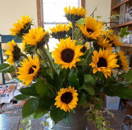 Local summer sunshine  arrangement