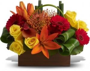 Long Lasting Energy   in Oakville, ON | ANN'S FLOWER BOUTIQUE-Wedding & Event Florist
