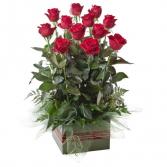Long Stem Red Rose Box Box Arrangement