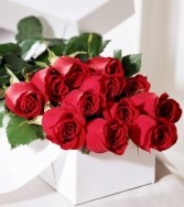 Long Stem Red Roses BOXED Boxed Roses, Long Stem