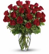 Long Stem Red Roses  Roses