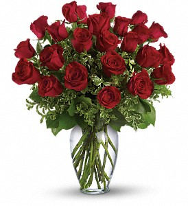 Long Stem Red Roses  Roses  in Princeton, TX | Princeton Flower and Gift Shop