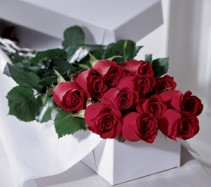 Long Stem Red Roses with accents Boxed with Water Tubes
