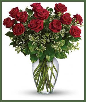 Long Stemmed Roses Your Color Choice in Arlington, TX | Lige Green Flowers