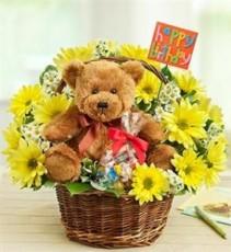 Lotsa Love - Happy Birthday Birthday