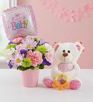 Lotsa Love Welcome Baby Girl New Baby Arrangement in Snellville, GA   SNELLVILLE FLORIST