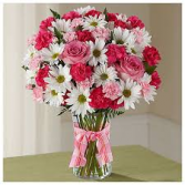 Lotta Pink Vase Arrangement