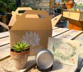 Lotus Gift Box Gift Box