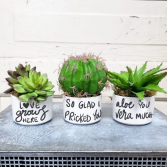 """Love"" Artificial Plant Trio"