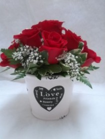 Love, Beauty and Dreams Roses