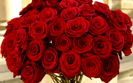 HOW BIG IS YOUR LOVE? From 1 dozen to 5 dozen red roses
