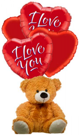 love of hugs Plush and balloons in Falls Church, VA | Geno's Flowers