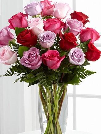 Multi colored Roses