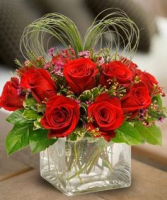 Love & passion roses