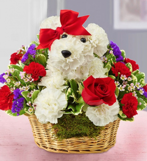 Love Pup™  in Saint Cloud, FL | Bella Rosa Florist
