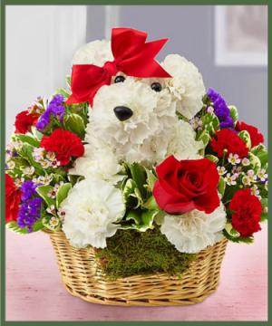Love Pup  in Arlington, TX | Lige Green Flowers