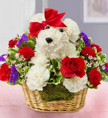 Love Pup Adogable Valentine Flowers