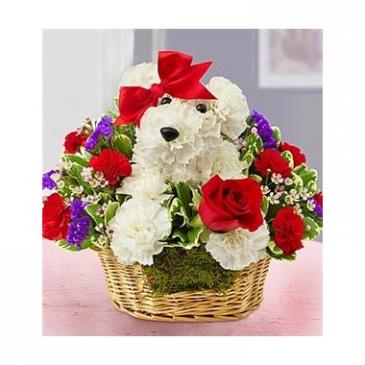 Love Pup Floral Arrangement