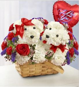 LOVE PUPPIES w/ Valentine mylar