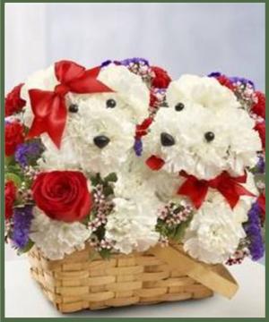 Love Pups Your Choice of Color in Arlington, TX | Erinn's Creations Florist
