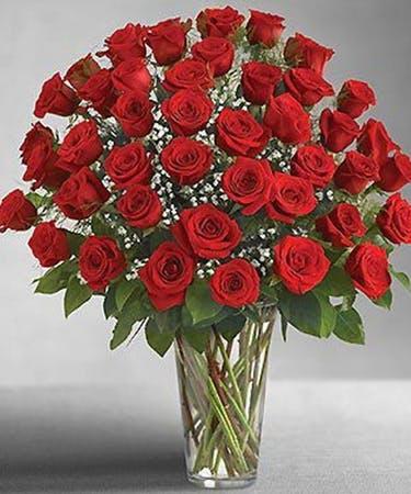 Love Struck 48 Roses