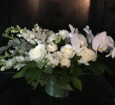 Love White Blooms Premium White Holland Blooms With Orchids And Roses