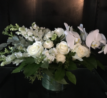 Love White Blooms Premium White Holland Blooms