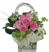 Trendy Roses and Hydrangea In Glass cube