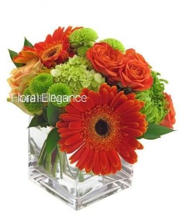 Orange blossom delight Fresh flowers