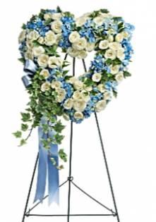 Lovely Blue Bloom