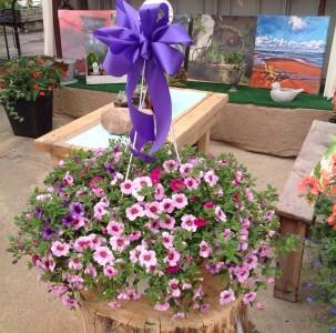 Lovely Cali Basket Hanging Basket