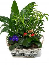 Lovely Garden planter basket
