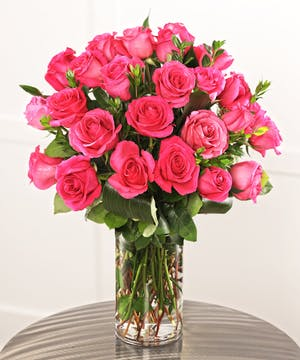 Lovely Hot Pink Roses