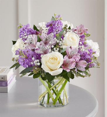Lovely Lavender All Occasions