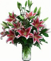 Lovely Lilly Bouquet Stargazer Lily Bouquet