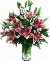 Lovely Lily Bouquet Stargazer Lily Bouquet