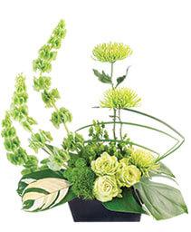 Lovely Lime Floral Arrangement