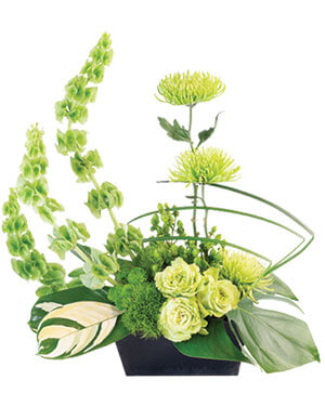 Lovely Lime Floral Arrangement in Sugar Land, TX | HOUSE OF BLOOMS