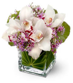 Lovely Orchids  All-Around Floral Arrangement